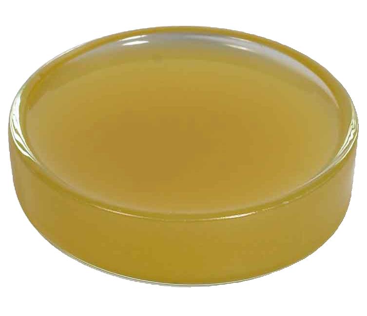 无水羊毛脂 USP (美国药典)